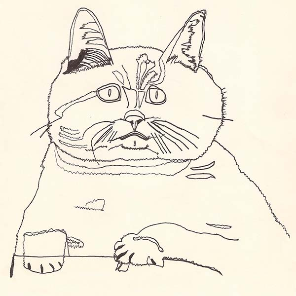 constipated cat -limited edition 1:10 signed giclee print